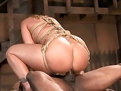 Anal, Big Butts, Bondage, Interracial